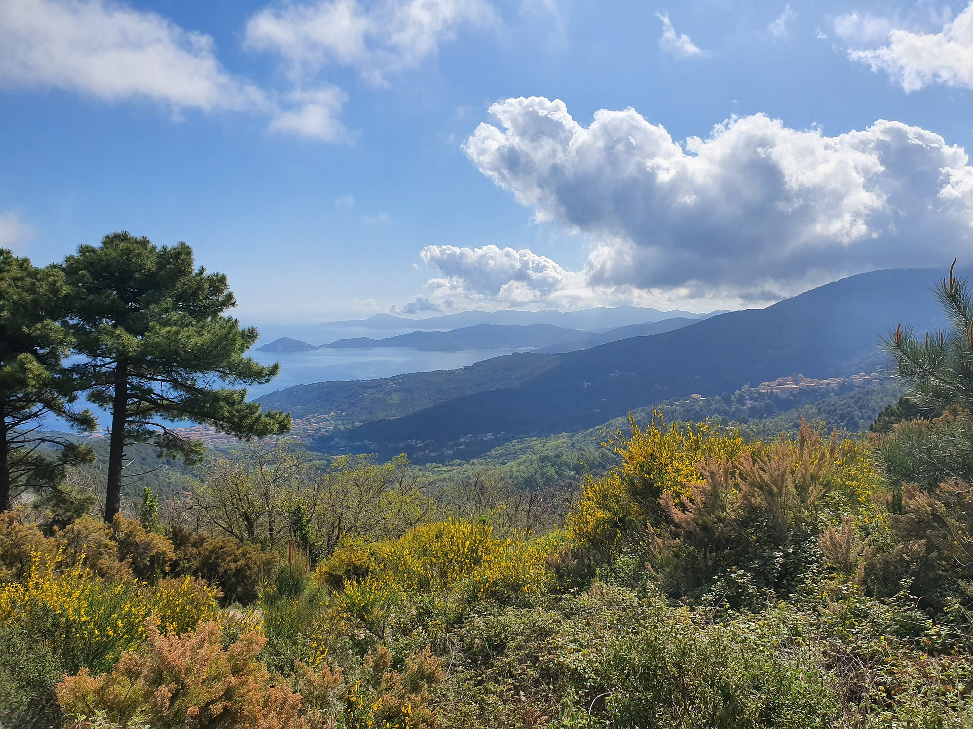 Parco nazionale Isola d'Elba